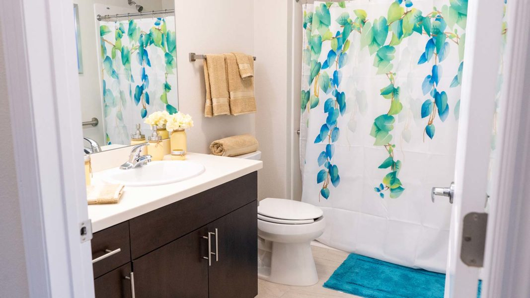 Assisted Living Apartment Bathroom With Sink, Walk-in Shower And Toilet